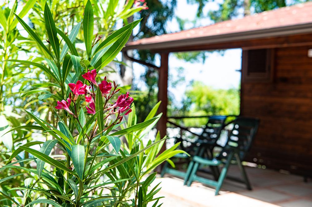 residence-chalet-vicino-al-mare-immersi-nella-natura