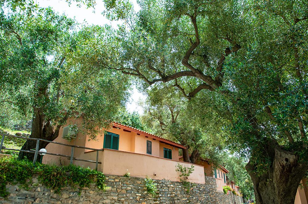 bungalow-classic-villaggi-turistici-offerte-sul-mare