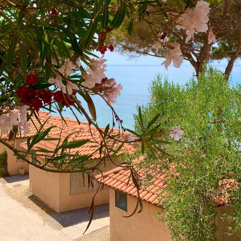 vacanze-luglio-bungalow-sul-mare-cilento-699